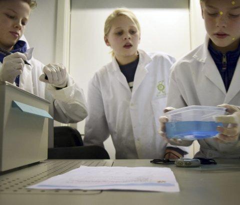 Nikolai (t.v.) og Mikkel studerer Marius Claudey (12) sin celleprøve.
