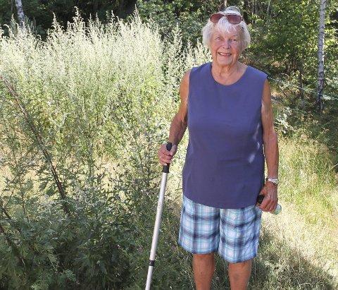 MANGEÅRIG STRID: Hytteeier Audhild Freberg håper at saken nå kan gå mot en konklusjon. FOTO: LARS IVAR HORDNES