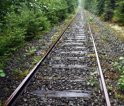 LEGGES NED: Samferdselsdepartementet frigir Valdresbanen. (Arkivbilde)