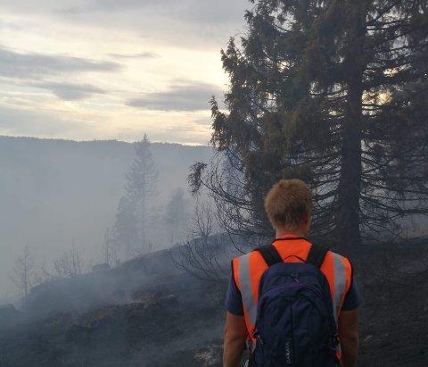 Det var over 20 branner bare i Telemark torsdag ettermiddag.