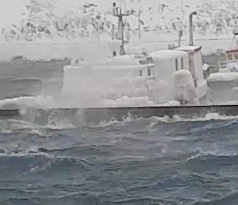 Slik ser et av fartøyene som ligger ved flytebryggen i Nordvågen ut. Isen er tung og kan trekke båten til bunns.