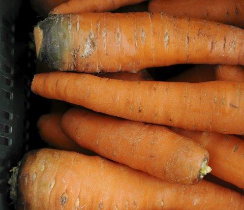 I alle fasonger: Gulrøtter i alle fasonger blir å finne i butikkhyllene dersom Norsk Standard for gulrøtter blir endret. Foto: Frank May / NTB scanpix