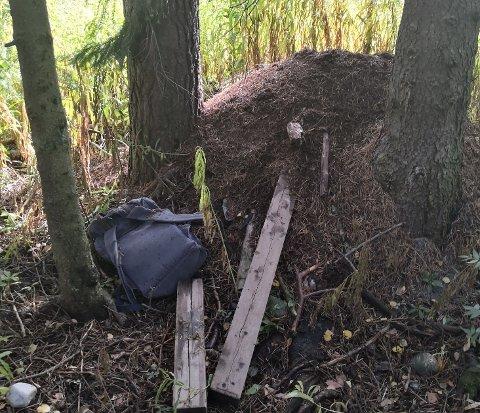Tyvegods: Politiet fant tyvegodset liggende i skogen. Det ble levert tilbake til vekterne ved City Syd.