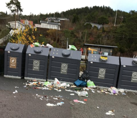 IKKE VAKKERT: Slik så det ut ved søppelkassene nær Bjerkøymoloen fredag formiddag.