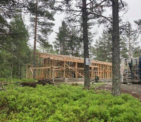 SATT OPP FEIL: DNT-hytta ved Nerdammen i Solbergelva ligger 70,4 meter fra vannkanten. Det medfører ekstra strenge regler for bygging, som DNT ikke tok hensyn til.