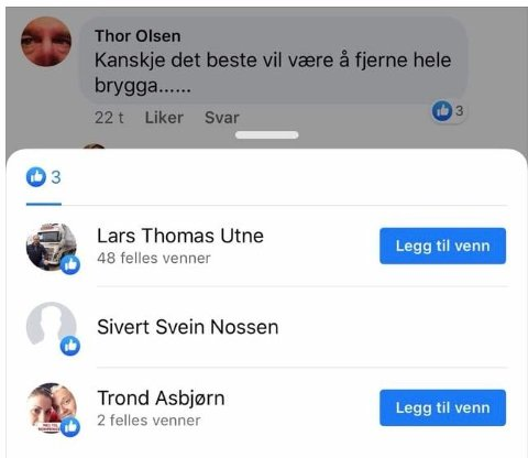 Screenshot fra Fredrikstad blads kommentarfelt på facebook, sak 25.02.20; stein fra Finn Krohns brygge nå er begynt å rase. Råde Høyres kommunestyrerepresentant Lars Thomas Utne liker et forslag om å bare fjerne hele den privateide brygga. Er dette Råde Høyres offentlige mobbeholdning i saken?