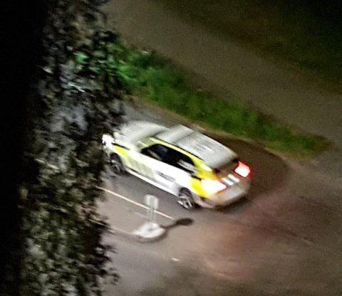 SØKER: Politiet søkte med flere bevæpnede patruljer etter gjerningsmannen i området tirsdag kveld. Her på Løvenstad. FOTO: RB-TIPSER