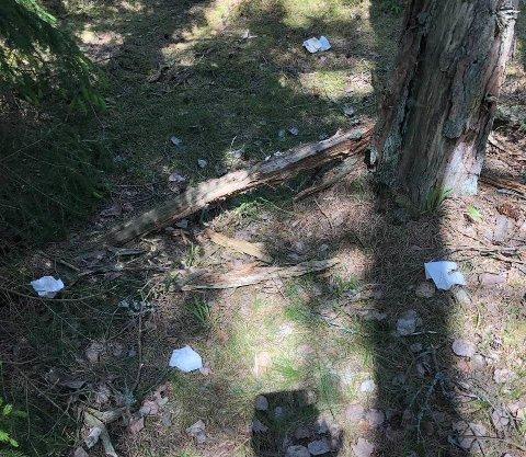 Dopapir: På Storesand på Hvaler var det tydeligvis mange som gjorde sitt fornødne i naturen og kastet papiret fra seg etterpå.