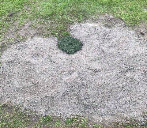 UTBEDRET: Halden kommune har gjort en god jobb med å utbedre den gamle og bløte matta på Halden stadion. Resultat: Kvik - FFK spilles likevel på Rødsjordet lørdag.