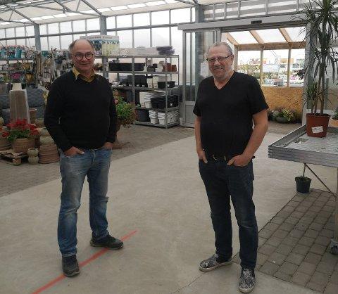 ØKT PRODUKSJON: Rolf Egil Skifjord har overlatt hovedansvaret for sommerplanteproduksjonen til Edvard Wasseng. Nå bygger de et nytt drivhus og leier også lokaler.