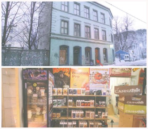 Crop Shop: Slik så butikken ut da politiet gjorde razzia i februar 2013. Bilde fra inne i butikken viser noe av varene de solgte der.