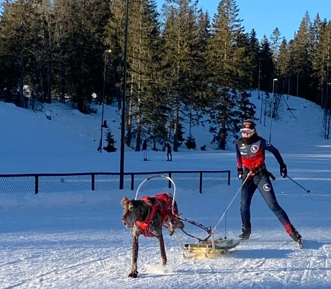 TEST: Hannah Midtlien Langlie med hunden Nano i fint driv.