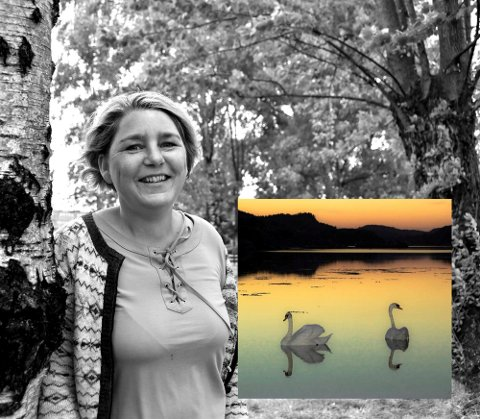 Vinner: Ann kristin Hynne Green ble vinner av Instavår med et svanepar ved Grindholmen  som er fotografert i et flott kveldslys.