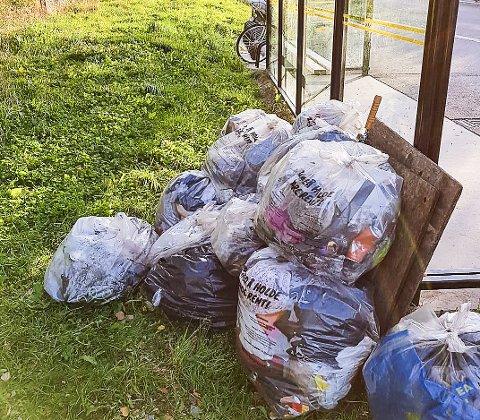 Mye søppel: Dette er resultatet av det som ble plukket rundt Tangenten. Foto: Privat