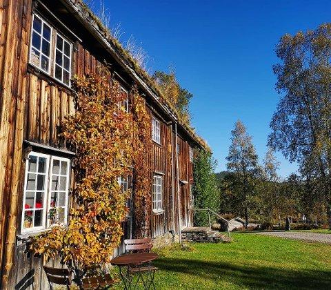 Rinfad Næringsforening håper at kommunens kulturbudsjett ikke blir nedprioritert i disse virustider. (Foto: Trine Engdal Storholt)