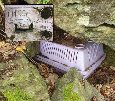 KATTEBUR I SKOGEN: Inne i buret ble det funnet levninger etter en død katt. Nå ønsker Redd Dyra tips i saken. Foto: Redd dyra