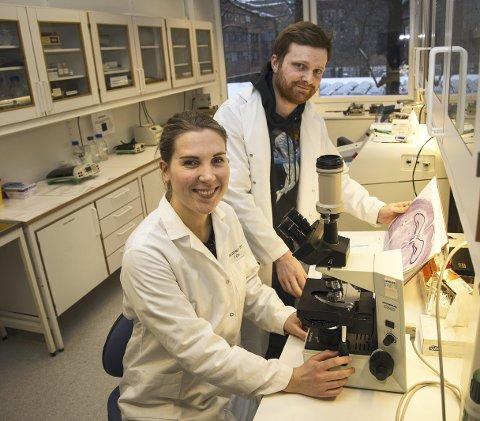 Spennende funn: Elise Holter Thompson og Kristian Kinden Lensjø tilbringer mye tid på universitetets laboratorium, og nå har de gjort spennende funn i hjernen.