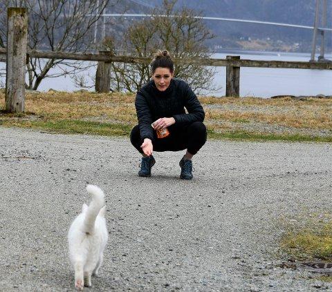 REISELIVSVERT: Katrin Persche kan fortelja at sesongen på Gøysa Gard har vore grei nok. Her gir ho gardskatten Snøfnugg ein godbit tidlegare i år.