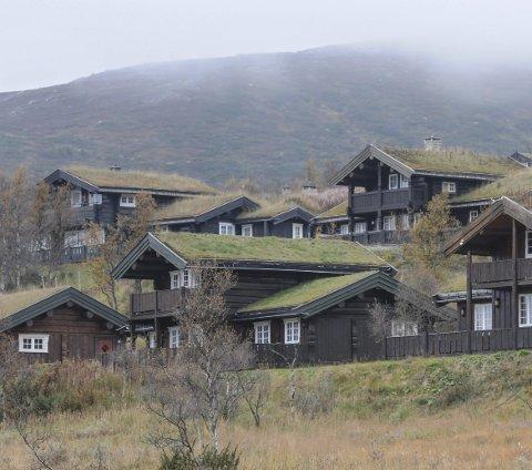 HYTTELIV: Den typiske hytteieren er en «innfødt nordmann» over 60 år, men det finnes også en betydelig andel som ikke er riktig så typiske. Arkivbilde