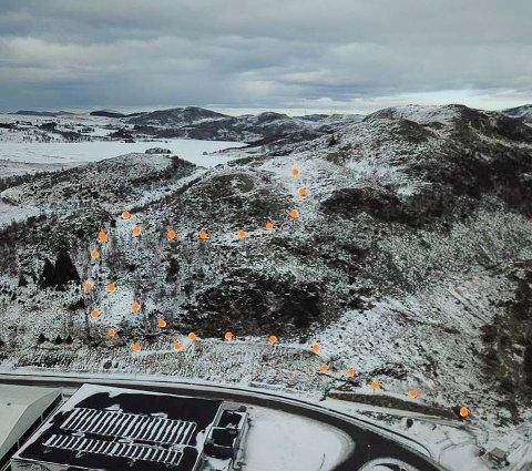 Formann Kyrre Nilsen i Bjelland AS har merket den nye turstien til Kodlifjell med oransje stikker.