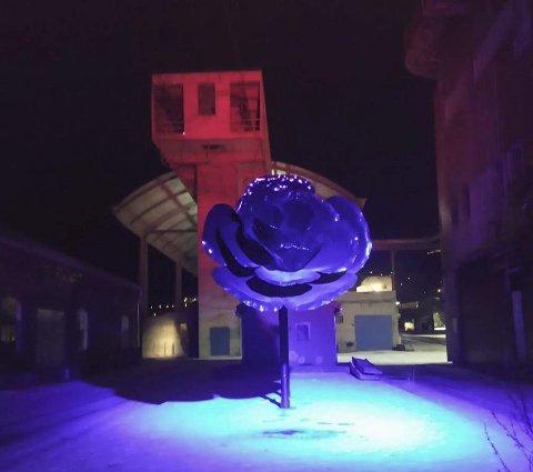 Lys i mørket: «Håpet er med dette at Smelteverkstomta no vert opplevd som ein tryggare og hyggelegare stad å opphalde seg og gå tur etter mørkets frambrot», skriv Ullensvang kommune. Foto: Ingvild Ystanes
