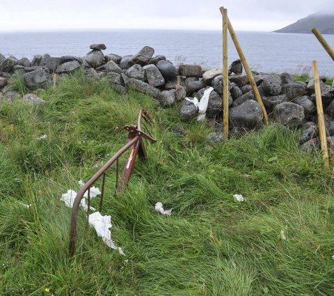 Dopapir: Slik ser det ut ved gjerdet på Unstad. På grunn av manglende toalett gjør flere fra seg ute.