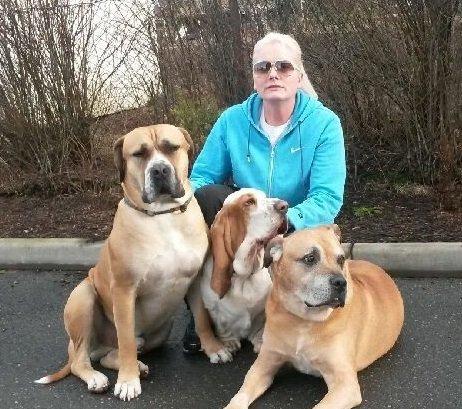 SKREMT: Liv-Siri Natvik med sine to mastiffer og en basset - tør ikke ha hundene alene i hagen mer. FOTO: PRIVAT