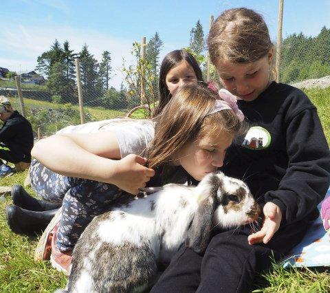 KANINAR: Kaninane og dei andre dyra på Soldalen Besøksgard gir barna store opplevingar.