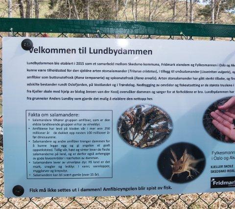 NYTTIG INFO: På dette skiltet får du nyttig informasjon og både dammen og salamanderne.