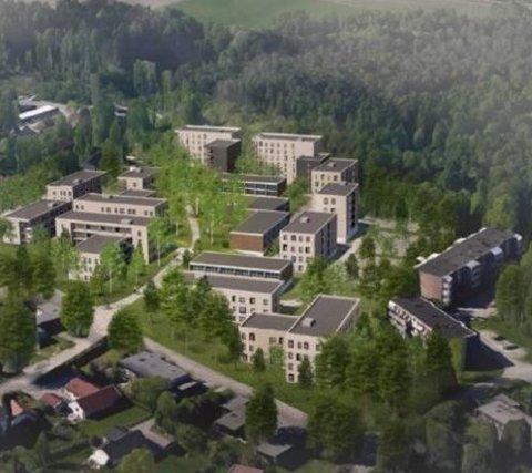 STORE PLANER: SiÅs ønsker å kunne bygge mye i Skogveien. Kaja Vel ønsker nedskalerte planer. Illustrasjon: SIÅS