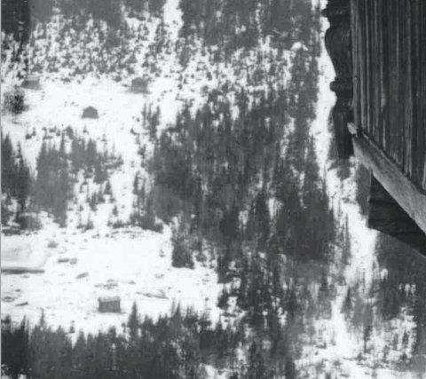 PLASSEN: Her er bilde av plassen Hesjukåse, et forstørret utsnitt av et gammelt bilde. Bilde er tatt fra nord Mellom Lurås og det er stabbursveggen der som er til høyre i bildet. Hesjukåse er plassen øverst på bildet og Førlid er nedenfor.