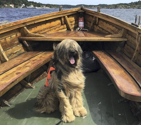 FOR ALLE: Påbud om redningsplagg i båt bør gjelde alle – i hvert fall alle tobeinte.