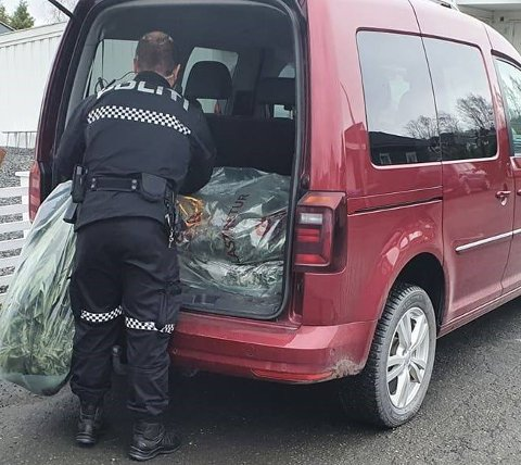 GJORDE BESLAG: Politiet tok blant annet beslag i sekker med det som trolig er hasjplanter under aksjonen torsdag.