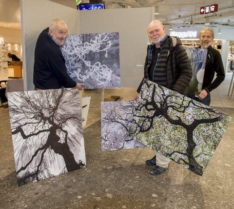 Rigger ned: Naturfotofestivalen er slutt for i år og Rolf Støa (til venstre), Magnus Reneflot og Svein Grønvold tar ned de siste bildene på Stjernetorget i Storsenteret. Det går rundt økonomisk, men oversikten er ikke klar ennå. Foto: Kari Kløvstad