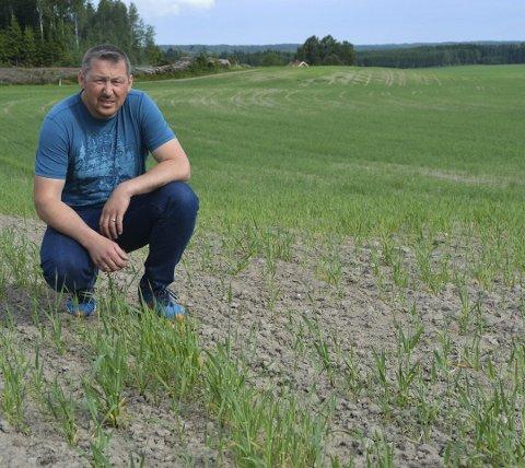 Møkkalukt: Landbrukssjef Johannes Martin Eriksen bekrefter at det finnes regler for gjødselspredning.