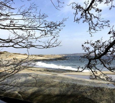MEKTIGE LILLESKAGEN: Det er stiv kuling og havet bruser når vi er på besøk en vårdag i år.