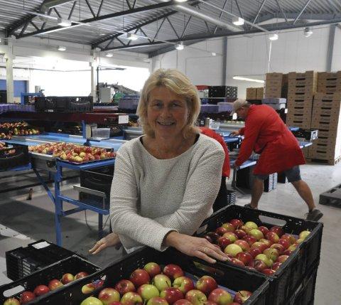 IKKE HVILESKJÆR: – Samarbeid styrker alle og vi må hele tiden erkjenne at vi kan bli bedre i alle ledd, sier daglig leder Bjørg Hesthag. Nettopp samarbeid styrker Sauherads posisjon i norsk fruktbransje.