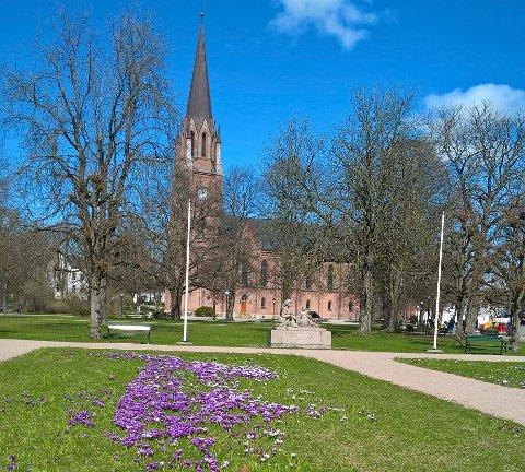 Kirkeparken skal få nye, store bed med insektsvennlige planter i år. Arbeidene starter trolig på sensommeren eller til høsten.