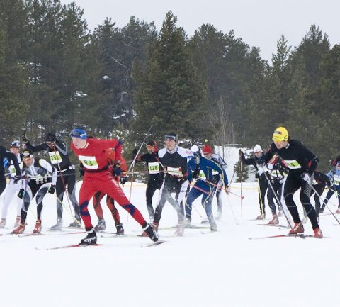 POPULÆRT LANGLØP: Saami Ski Race går i fristil, og skiller seg dermed ut fra klassiskdistansene i Ski Classics.