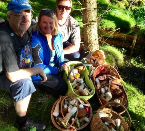 FULLE KURVER: Olav Imrik, June Anstem og Morten Anstem med fangsten de satt igjen med etter en knapp time i skogen på tirsdag.