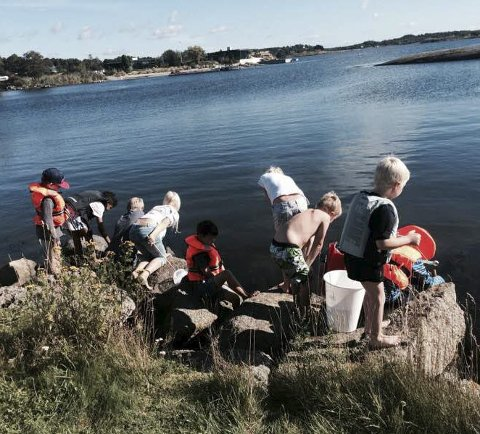 Samarbeidslæring: Her hjelper elevene hverandre i aldersblandede grupper på tur til Lamøya.