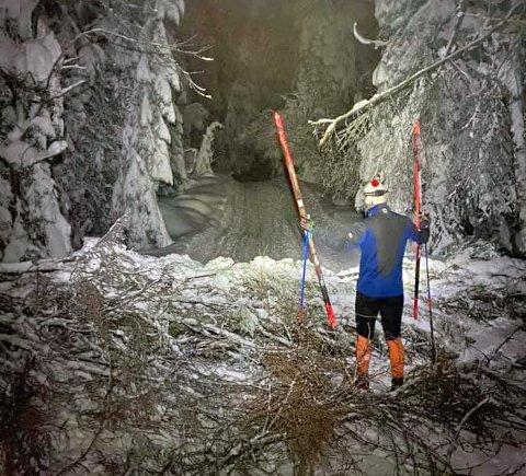 Da Christoffer Borge Olsen (34) gikk på ski mellom Tverken og mot Skimtrunden lørdag dukket plutselig denne kvisthaugen opp midt i skiløypa.