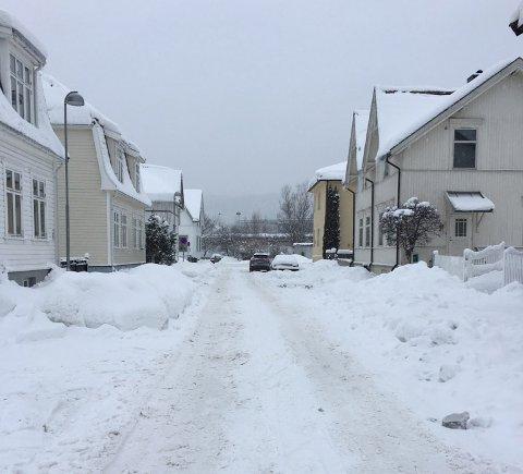 MYE SNØ: I Rektor Nygårdsgate er det fortsatt mye snø der bilene skulle ha parkert. Bildet er tatt tirsdag formiddag. Onsdag startet kommunen med bortkjøring av snø.