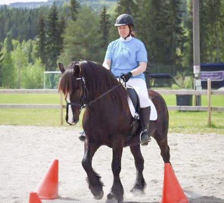 VANT: Ann Mari Bakketun og hesten Munin vant gull i Dølahest-mesterskapet. Foto: Privat