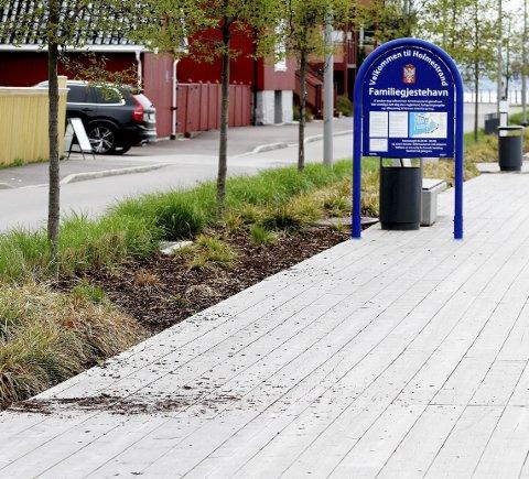 Bark ble spredd utover brygga: – Dette er også hærverk, sier en irritert Nikoline Hammerø. Foto: Pål Nordby