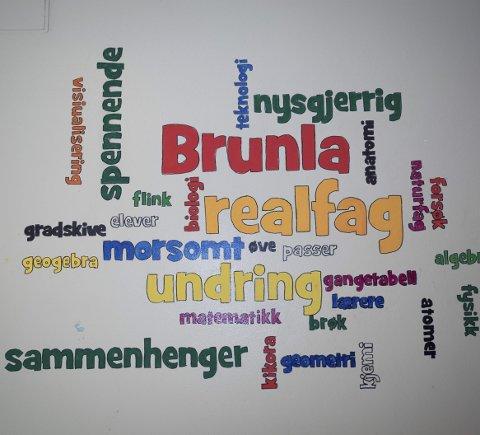 På veggen: Disse ordene ble malt på veggen på Brunla ungdomsskole i høst.