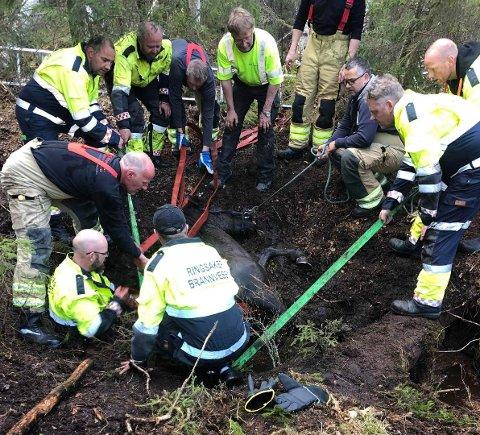 REDNINGSAKSJON: En rekke brannmenn deltok i arbeidet med å berge hesten Samba fra bekken.