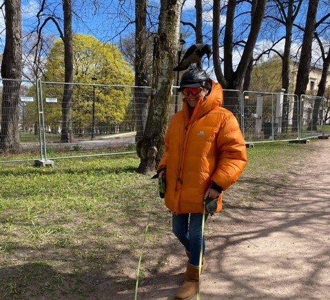 KRÅKE PÅ HODET: Ann-Kjersti Sisselberg sier folk setter ting i halsen når hun kommer gående i Slottsparken med kråke på hodet.