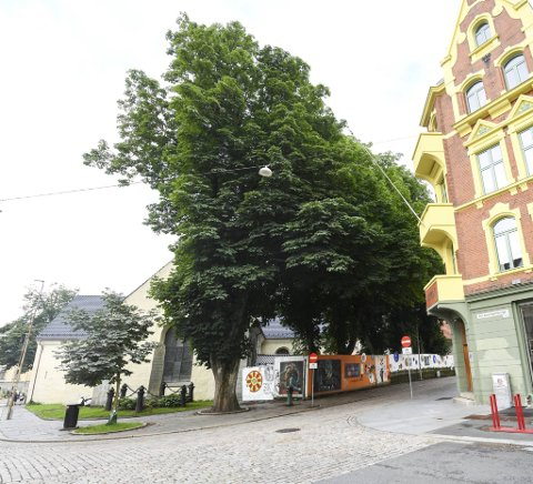 Det er ikke mye man ser av Korskirken fra Øvre Korskirkeallmenningen. Trærne overstiger de fleste byggene i området.