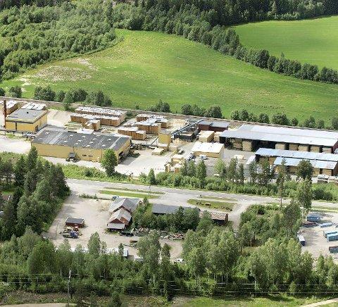 FRITATT: Eidskog Stangeskovenes fritak for eiendomsskatt skal tas opp i kontrollutvalget i Eidskog.FOTO: OLE-JOHNNY MYHRVOLD